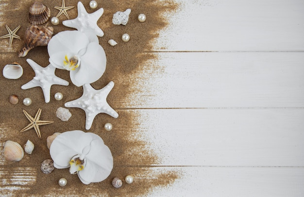 Морские раковины с песком и цветами орхидеи