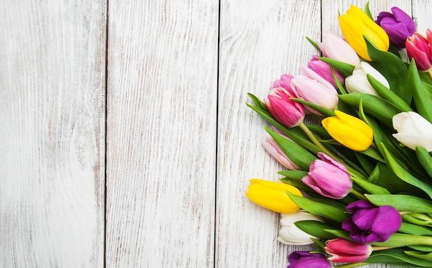 春のチューリップの花