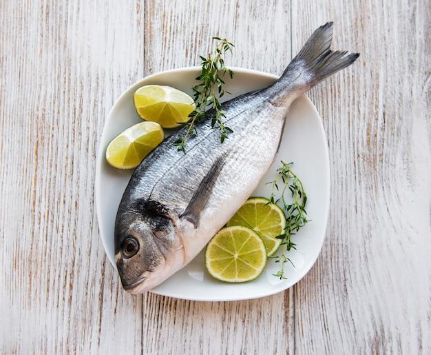 新鮮なヨーロッパヘダイ魚