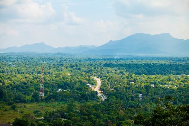 スリランカの熱帯林