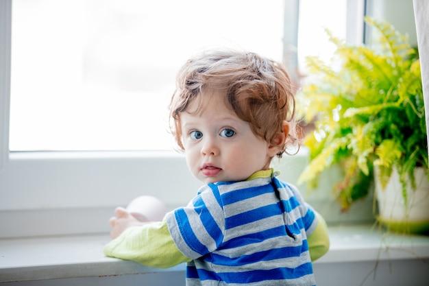 窓枠と植物の近くの小さな男の子