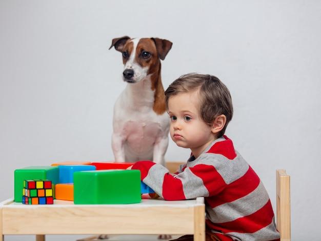 小さな幼児男の子が犬とテーブルで遊ぶ
