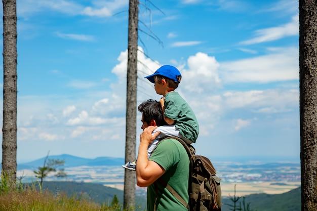 父と息子が山でハイキングをしている、渓谷の景色