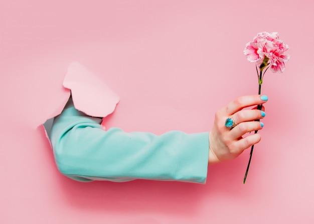カーネーションの花を持つ古典的な青いジャケットの女性の手
