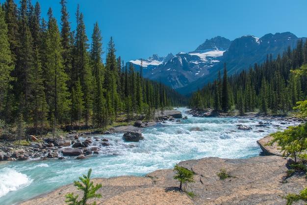 バックグラウンドで大きな山とミスタヤ渓谷、アルバータで流れる川とカナダの森林景観