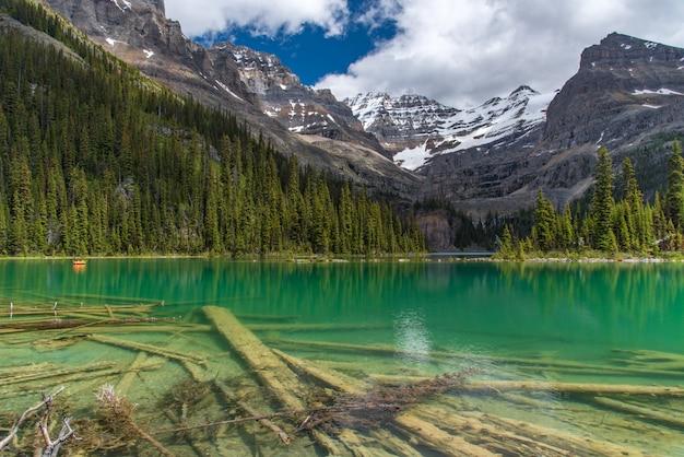 春、ヨーホー、カナダの曇りの日に大原湖ハイキングコース