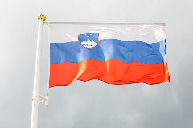 空の前の旗にスロベニアの旗