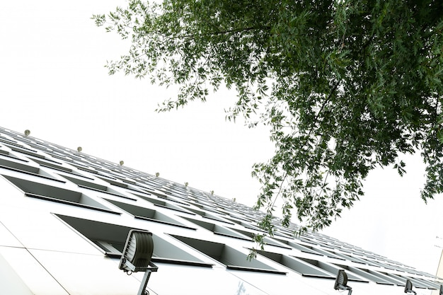 背の高い白い建物と木の葉の地上ビュー
