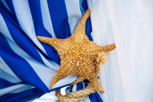 青と白のカーテンで乾燥したヒトデ