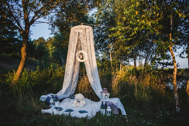 結婚式の装飾自然の中でロマンチックなピクニック