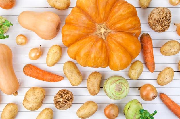 白い背景の上の秋野菜