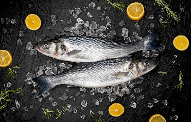 黒い石、トップビューで氷の上のシーバス魚
