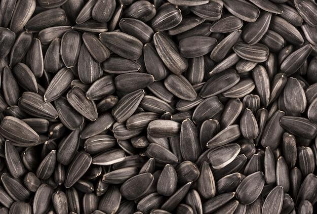 黒ひまわりの種の背景