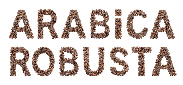 白い背景で隔離のコーヒー豆の焙煎から作られたアラビカとロブスタの言葉