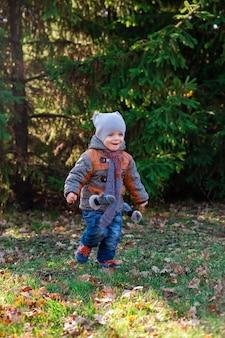 子供が秋の公園まで走る