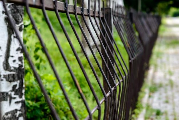 自然の中の鉄のフェンス。