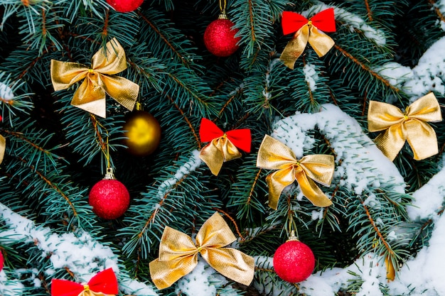 飾られたクリスマスツリー