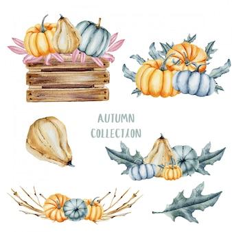 水彩のかぼちゃと葉のコレクション