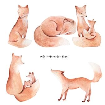 Акварельные лисы