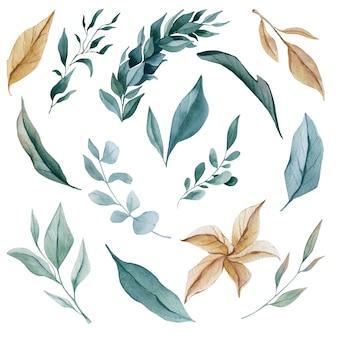 水彩葉ユーカリ