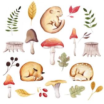 動物の赤ちゃんと秋のイラスト