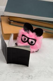 本と面白いふわふわおもちゃ