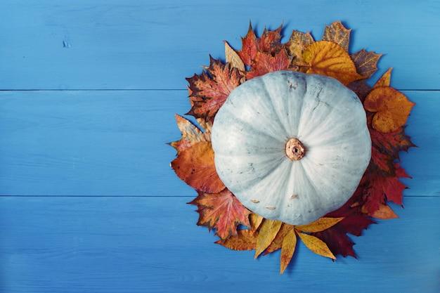 青い木のカボチャとカラフルな紅葉