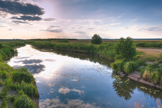 Пейзаж до захода солнца с рекой и травой в поле