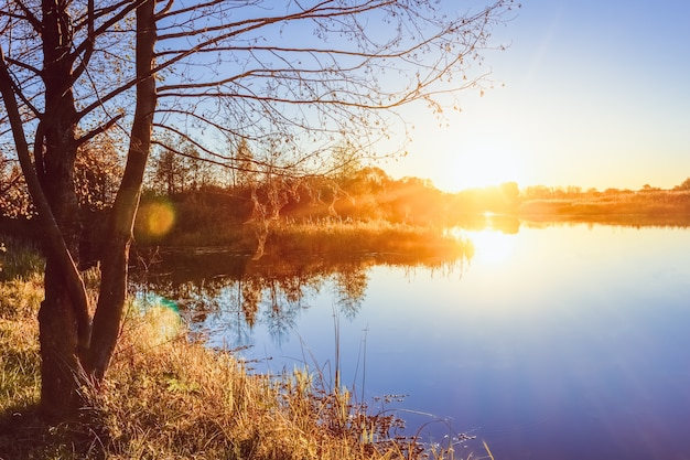 秋の川の銀行を見下ろす夕日