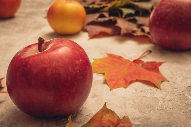 カエデの葉と灰色の背景に赤い熟したリンゴ