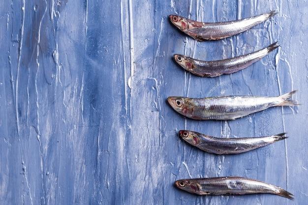 Образец рыбы. свежие анчоусы на синем