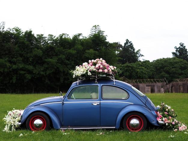 Старинные автомобили, украшенные цветами на траве полей.