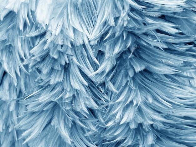 鳥鶏の羽の抽象的なテクスチャ
