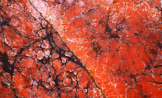 オレンジ色の油絵テクスチャ黒線大理石の抽象的な背景。
