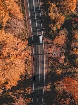 Аэрофотоснимок дороги в красивый осенний лес. красивый пейзаж с пустой сельской дороге, деревья с красными и оранжевыми листьями. шоссе через парк. вид с летающего беспилотника. россия, санкт-петербург
