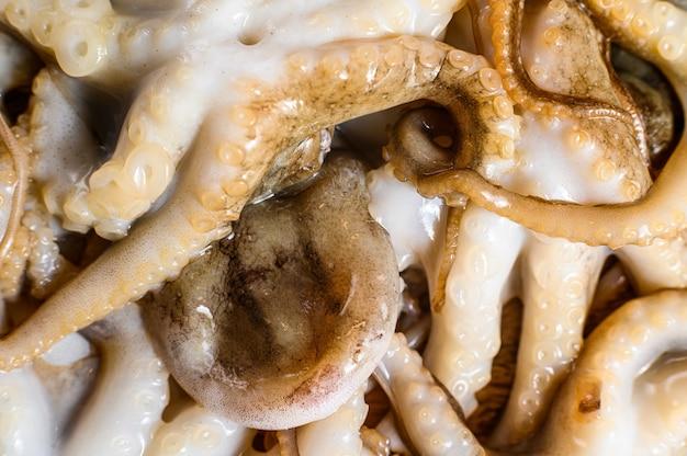 Сырой осьминог. органические морепродукты. закройте