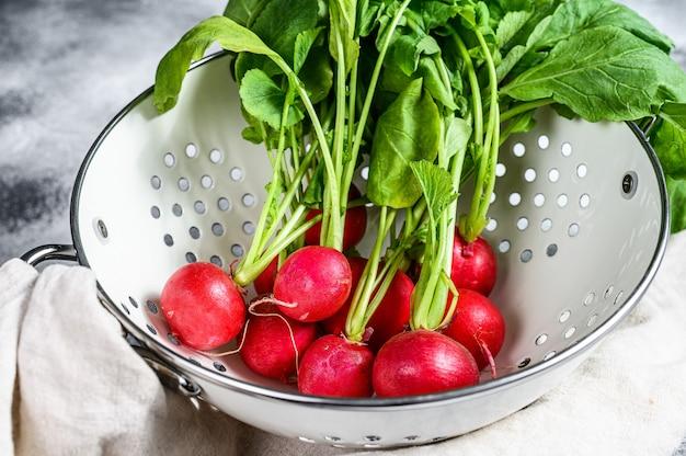Свежие красные редиски в белом дуршлаге. ферма органических овощей. серый фон вид сверху