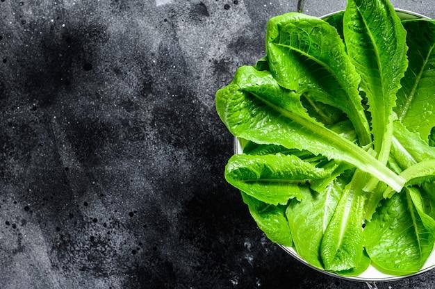 Спелый органический зеленый салат романо в дуршлаге. вид сверху. копировать пространство