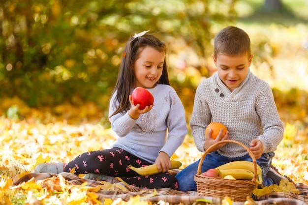 秋の公園で子供たちが遊ぶ。子供の黄色のカエデの葉。少年と少女の葉。秋の家族の屋外の楽しみ。幼児の子供と未就学児の秋
