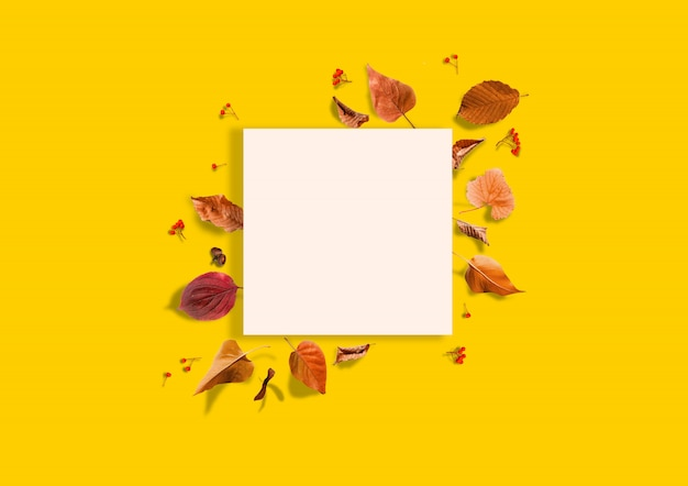 オレンジ色の背景に落ちる紅葉