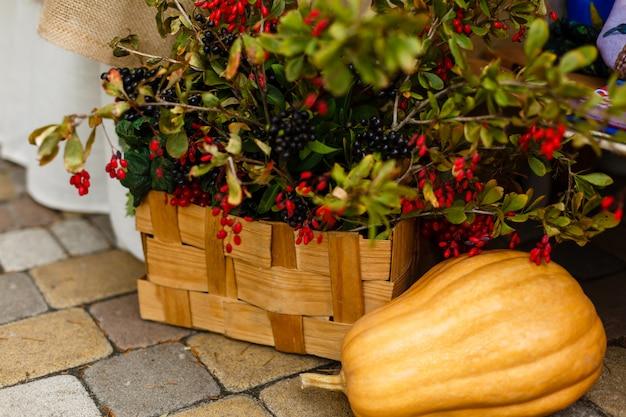 公園の装飾、秋、カボチャ