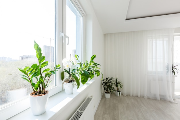 白い寝室のアパートで抽象的な白い手を振るカーテン