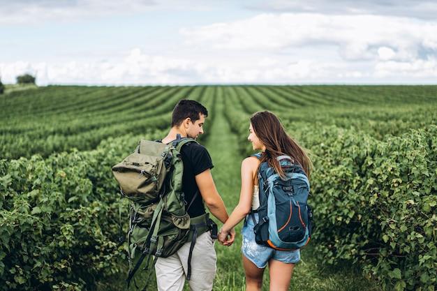 Задний взгляд молодой пары с рюкзаками на плантациях смородины держа руки и проводя время совместно. любовь, концепция туризма