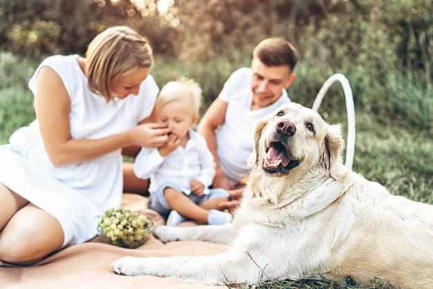 Молодая милая семья на пикнике с собакой