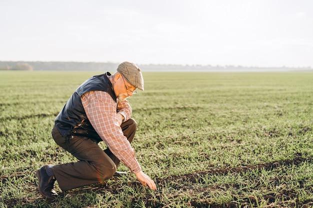 大人の農家が彼の農場で植物をチェックします。