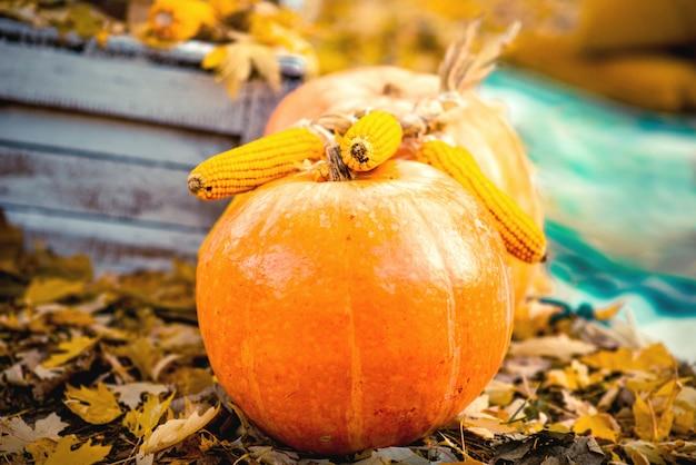 秋の紅葉と地面にカボチャとコーン