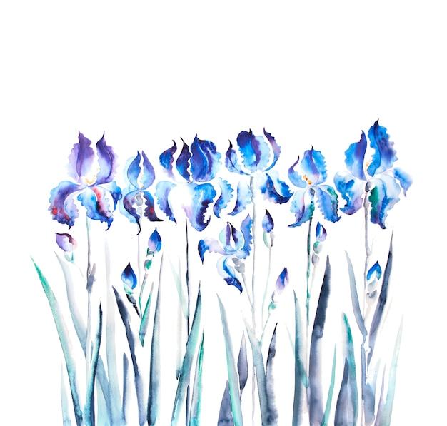 孤立したアイリスの花の水彩画