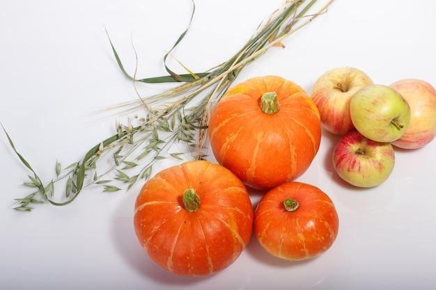 Еда на день благодарения с тыквами, яблоками, пшеницей, овсом и осенними листьями