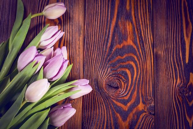 紫チューリップの花