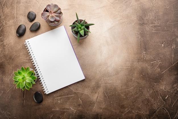 テーブルトップビューのメモ帳と多肉植物